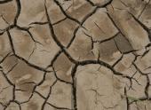 Более 2 млн китайцев страдают от нехватки питьевой воды из-за засухи