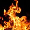 В Якутии сгорел цирковой автобус с запертыми в нем животными