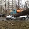 Ураган в Литве оставил без электричества более 45 тыс человек, два человека погибли
