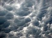 Ураган «Николас» оставил без электричества более 150 населенных пунктов в Беларуси