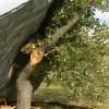 На запад Польши обрушился мощный циклон