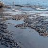 10 тонн нефтеотходов разлилось в районе Эгейского побережья Турции