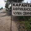 Вспышка африканской чумы свиней выявлена в Смоленской области