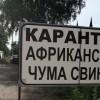 ЧС из-за чумы свиней введена в третьем районе Волгоградской области