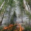 Режим ЧС объявлен в лесах Красноярского края из-за пожаров