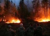 Рослесхоз рекомендует ввести ЧС в Красноярском крае из-за пожаров