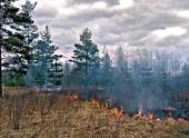 Режим ЧС В Нижегородской области из-за пожара продлился два часа