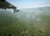 Самолет МЧС потушил 2 крупных лесных пожара на Ямале