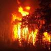 Себежский национальный парк горит в Псковской области