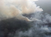 Крупный пожар на площади 190 гектаров потушен в тайге Бурятии
