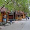 Жители Новосибирска могут сдать «лишние» овощи и фрукты в зоопарк