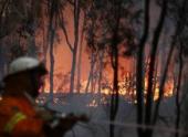 В австралийском штате Виктория бушует пожар