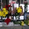 К посольству Дании в Москве принесли цветы в память о жирафе Мариусе