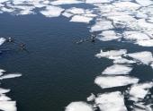 Реки вскроются ото льда в центре РФ в среднем на 10 суток раньше