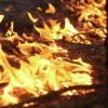Тысячи человек бросили на тушение природных пожаров на Дальнем Востоке