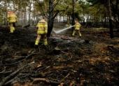 В голландском национальном парке возник сильный пожар