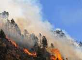 В Шангри-Ла на юге Китая возник лесной пожар