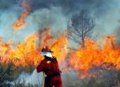 Лесные пожары в Северной Калифорнии угрожают 1 тыс. домов