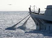 Северные реки покрылись льдом раньше срока