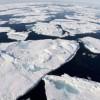 Пластиковый мусор добрался и до самых укромных уголков Арктики