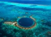 Рукотворные коралловые рифы придут на помощь настоящим