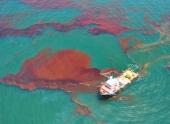 На дне Мексиканского залива обнаружили еще 2 млн. баррелей нефти, разлитой с вышки Deepwater Horizon
