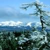 В 11 районах Сахалинской области объявлена лавинная опасность