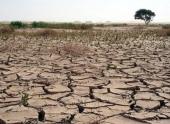 Засуху в Бразилии назвали сильнейшей за 80 лет
