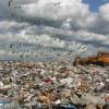 Проект мусоросжигательного завода в Петербурге приостановлен