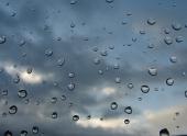 На пике климатической зимы в Черноземье ожидается ветреное мокропогодье