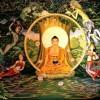 Точные даты жизни Будды узнают по частицам, оставшимся после кремации