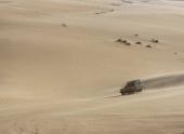 Пустыня Сахара стала более влажной