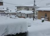 Сильный ветер и обильный снегопад парализовали Болгарию