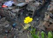 Число жертв землетрясения в Непале превысило 8,4 тысячи человек