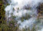 В Сибири площадь лесных пожаров за праздники увеличилась в 3,7 раза