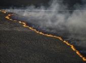 Пожар в районе ЧАЭС ликвидирован