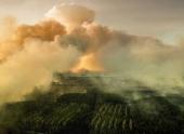 Пожары на территории Украины в зоне Чернобыльской АЭС могут привести к катастрофе