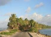 Коралловые острова не тонут, а растут с повышением уровня моря