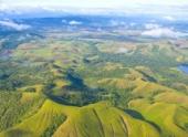 Два землетрясения произошли у берегов Папуа-Новая Гвинея