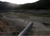В Калифорнии из-за засухи началась «война» за воду