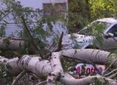 Восток Франции получил серьезный штормовой удар