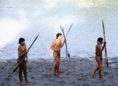 Изолированное племя в Бразилии начало контактировать с внешним миром и заразилось гриппом