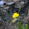 Число пострадавших от нового землетрясения в Непале приближается к тысяче