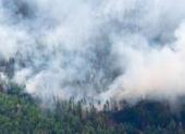 За сутки площадь пожаров в Приамурье выросла многократно