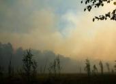 Площадь пожаров на Дальнем Востоке выросла в шесть раз