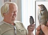 Житель Костаная выловил рыбу с клювом