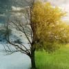 Земле грозит новая глобальная катастрофа: зима и лето могут поменяться местами