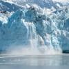 Ученые объяснили наличие водорослей в горах Антарктики