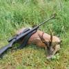 Глава Росимущества призвал перестать убивать конфискованных животных