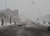 Пальмы побелели: Африку заметает снегом, появились кадры погодной аномалии